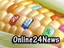 ввоз ГМО
