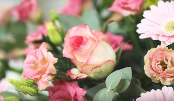 Как выбрать свежие цветы: рекомендации специалистов
